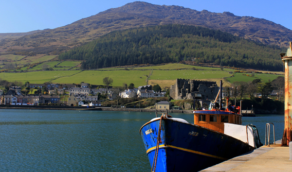 Carlingford Harbour and King John's Castle