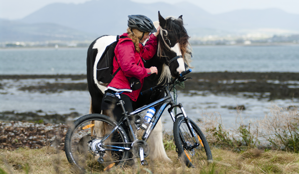 Cyclist on Cooley Peninsula